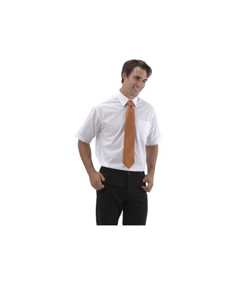 Classic Mens Short Sleeve Shirt